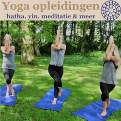 Banner van  erkende yoga opleiding