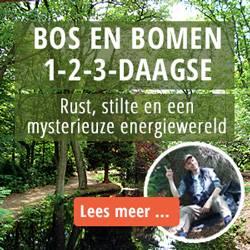 Banner van Jos Kleijnen, coach en trainer