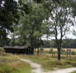 Wandelcafe Ede Ginkelse Heide. Singles 45+55+65+