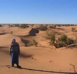 Bewuste vakanties - Marokko: Kamelentrektocht door de Sahara