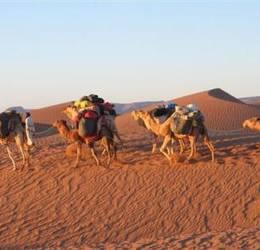 bewuste vakanties - Sahara-Marokko: wandelen met kamelen (Kerst 2018)