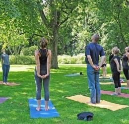 Online Informatie ochtend Yoga Opleiding (200u YA)
