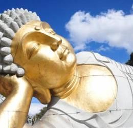 Online gratis Yoga Ochtendroutine