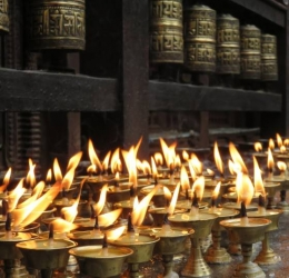 Jataka: 'Zwijnen en de zuiverheid van kristal'