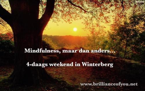 bewuste vakanties - Mindfulness-weekend in Winterberg...maar dan ander