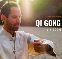 Qi gong online