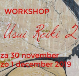 Usui Reiki 2 workshop