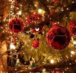 Kerstweekend singles Brabant