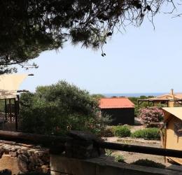Individuele Stiltereis Sardinië