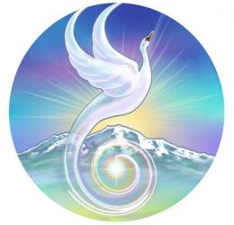 Spiritueel Wakker! - stappen naar verlichting