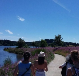 Frankrijk week met Yoga | Mindfulness | Dans