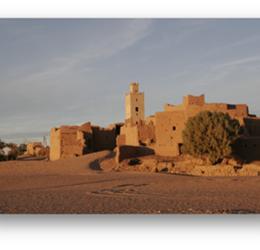 Sahara-Marokko: wandelen met kamelen