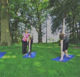 Hatha Yoga & Marketing - Bijscholing yogadocenten