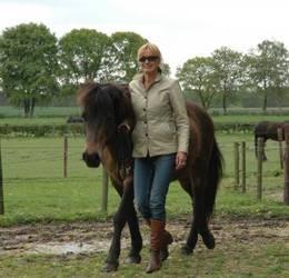 Ondek paardencoaching
