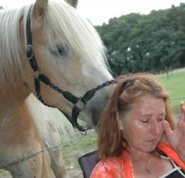 Ontdek Paardencoaching 2019