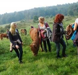 Stiltewandeling  met paarden
