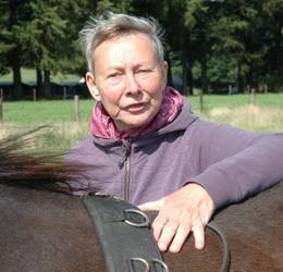 1-daagse Ontdek Paardencoaching