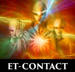 ET-Contact Experience  (Silvolde)