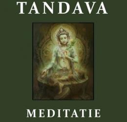 Tandava. De Kosmische dans van Shiva en Shakti