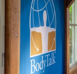 BodyTalk Access Training, je mobiele huis-apotheek